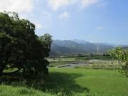 kamogawa7.20